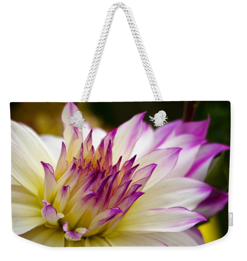 Fire And Ice Weekender Tote Bag featuring the photograph Fire And Ice - Dahlia by Jordan Blackstone