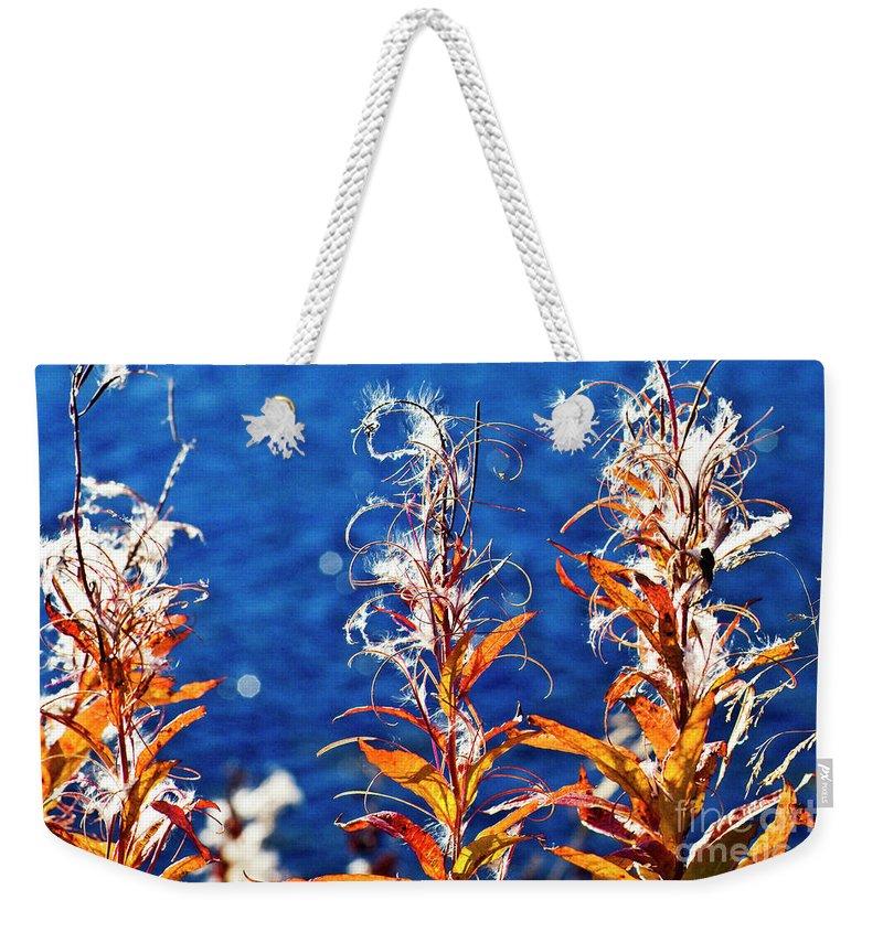 Fireweed Weekender Tote Bag featuring the photograph Fireweed Flower by Heiko Koehrer-Wagner