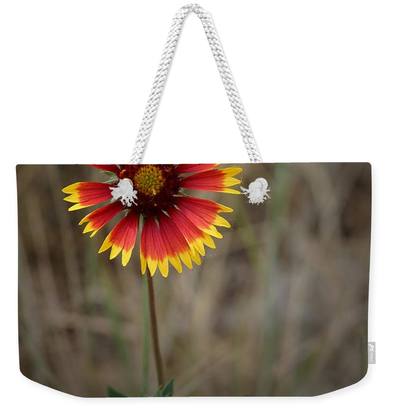 Colorful Weekender Tote Bag featuring the photograph Firewheel by Ernie Echols