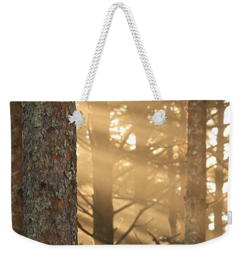 Bark Weekender Tote Bag featuring the photograph Firs On Fire by Laddie Halupa
