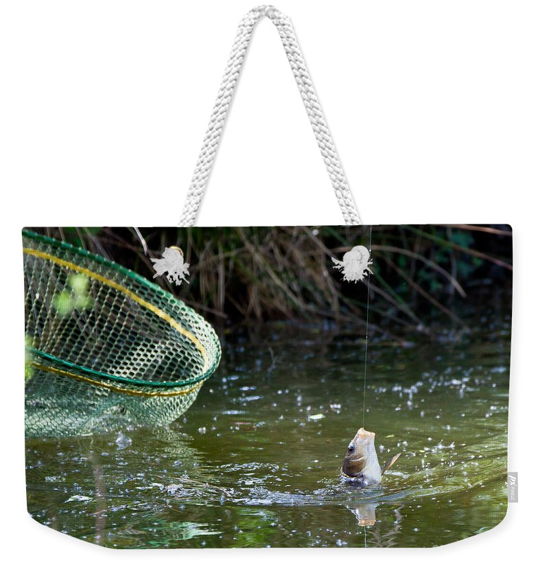Fish Weekender Tote Bag featuring the photograph Fish Caught On A Line In Water by Simon Bratt Photography LRPS