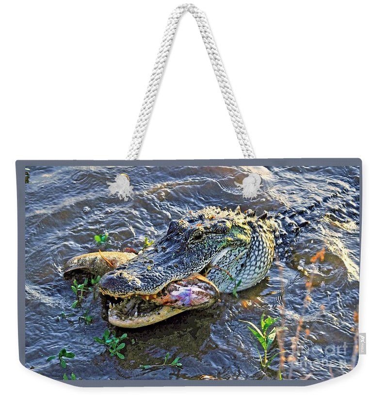 Animal Weekender Tote Bag featuring the photograph Fish For Dinner by Savannah Gibbs