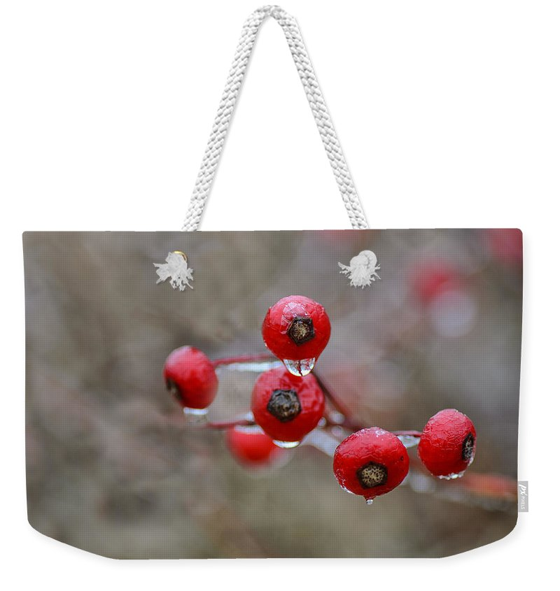 Rosehips Weekender Tote Bag featuring the photograph Flash Freeze by Susan Capuano