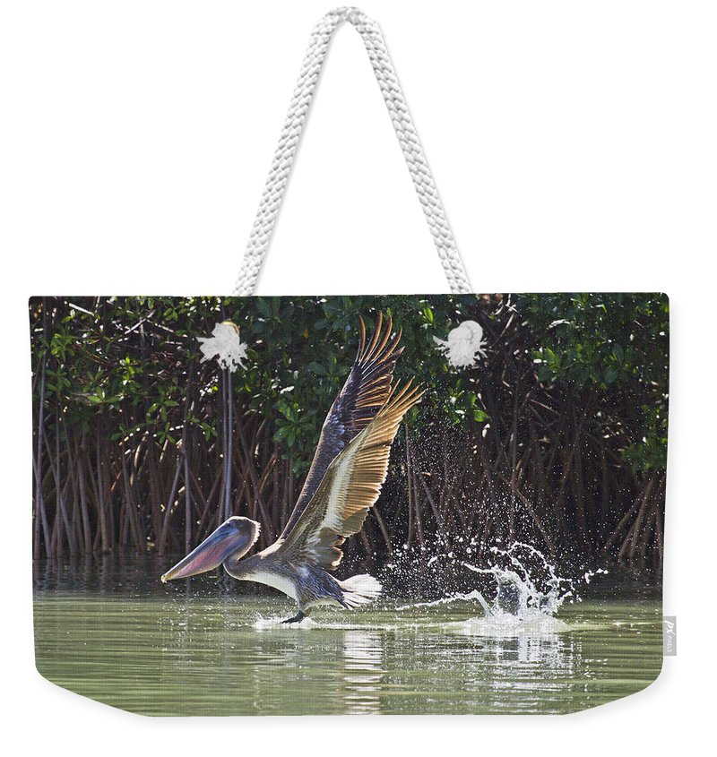 Brown Weekender Tote Bag featuring the photograph Flight by Betsy Knapp