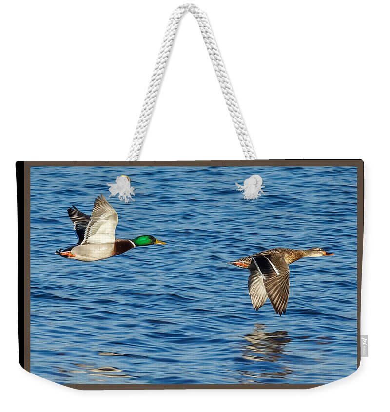 Mallards In Flight Weekender Tote Bag featuring the photograph Flight Of The Mallards by Ernie Echols