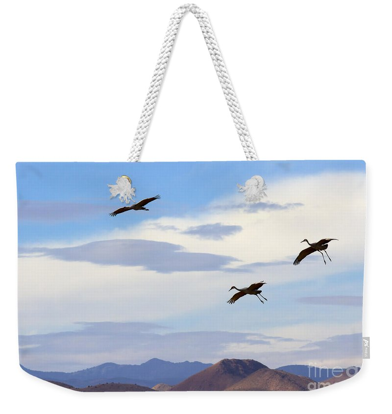 Sandhill Crane Weekender Tote Bag featuring the photograph Flight Of The Sandhill Cranes by Mike Dawson