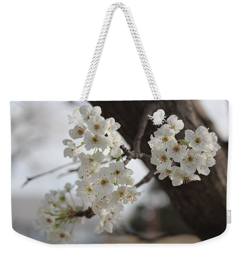 Flowers Weekender Tote Bag featuring the photograph Flowering Tree by Tony Pacelli