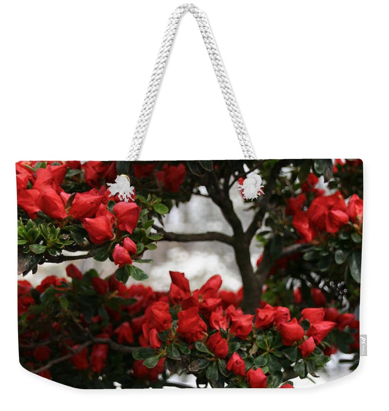 Flower Weekender Tote Bag featuring the photograph Floral Bonsai by Susan Herber