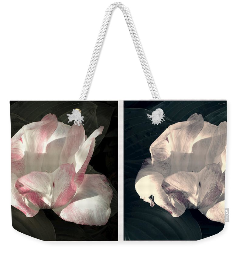 Floral Duo Weekender Tote Bag featuring the photograph Floral Duo by Photographic Arts And Design Studio