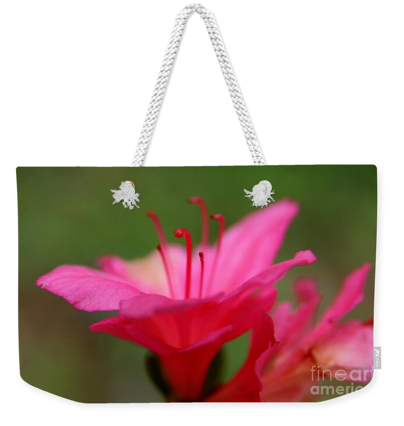 Pink Floral Weekender Tote Bag featuring the photograph Floral Rosa by Neal Eslinger
