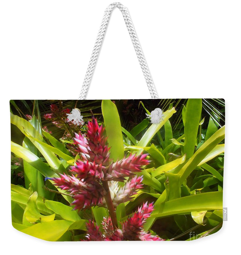 Bush Weekender Tote Bag featuring the photograph Florida Beauty by Jennifer Lavigne