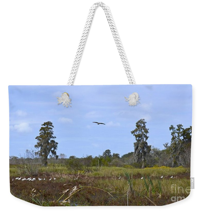 Marsh Weekender Tote Bag featuring the photograph Florida Nature And Wildlife by Carol Bradley