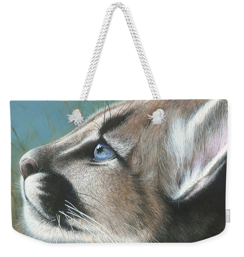Florida Weekender Tote Bag featuring the painting Florida Princess by Mike Brown