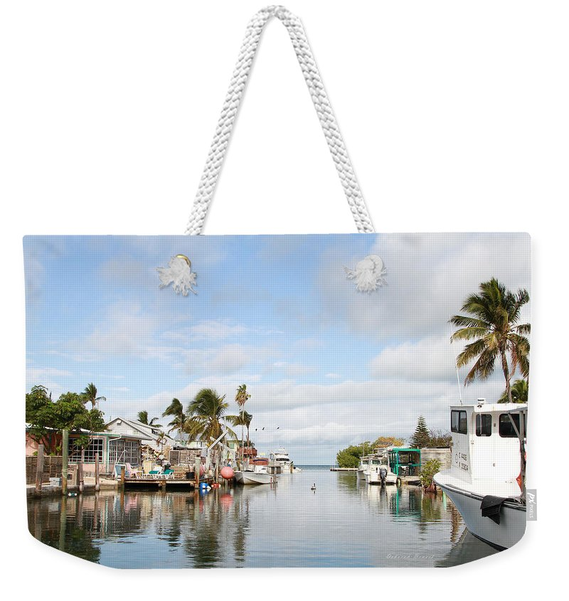 Florida Weekender Tote Bag featuring the photograph Florida Spring Day by Deborah Benoit