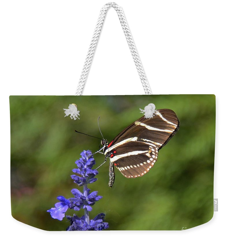 Zebra Longwing Weekender Tote Bag featuring the photograph Florida State Butterfly by Carol Bradley