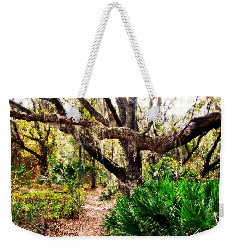 Nature Weekender Tote Bag featuring the photograph Florida Woods by Peg Urban