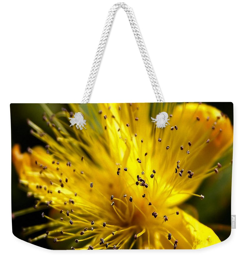 Abundance Weekender Tote Bag featuring the photograph Flower 161 by Ingrid Smith-Johnsen