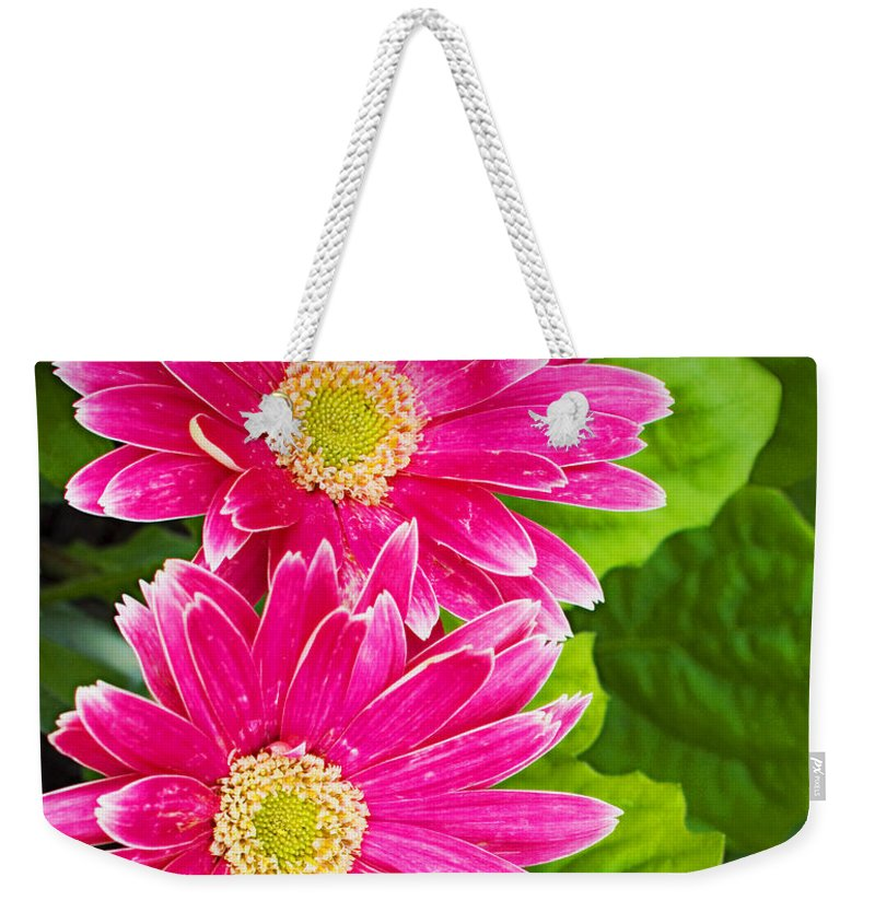 Flower Weekender Tote Bag featuring the photograph Flower 3 by Walter Herrit