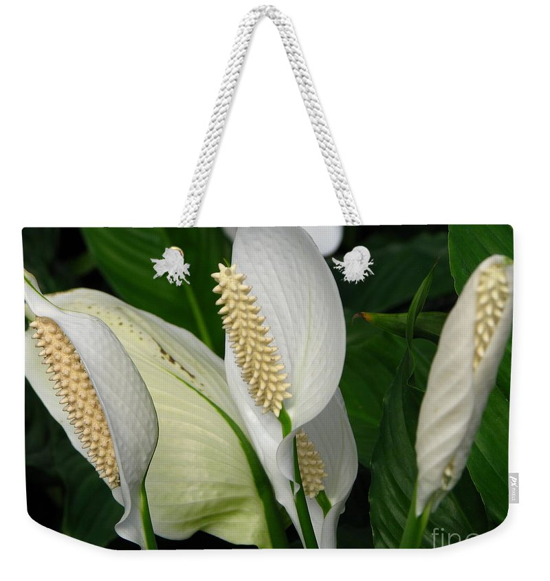 Art For The Wall...patzer Photography Weekender Tote Bag featuring the photograph Flower Art by Greg Patzer
