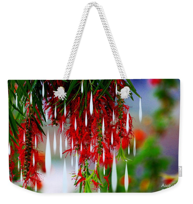 Augusta Stylianou Weekender Tote Bag featuring the photograph Flower Chandelier by Augusta Stylianou