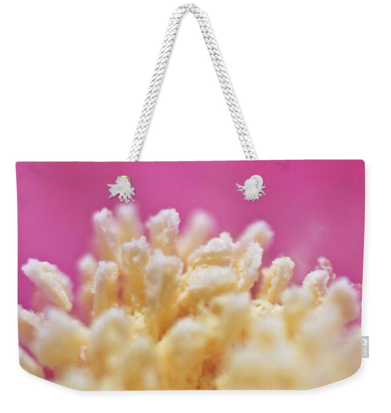 Flower Weekender Tote Bag featuring the photograph Flower by Dan Radi