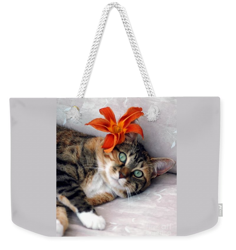 #cat #feline #calico Weekender Tote Bag featuring the photograph Flower In My Hair by Kathleen Struckle