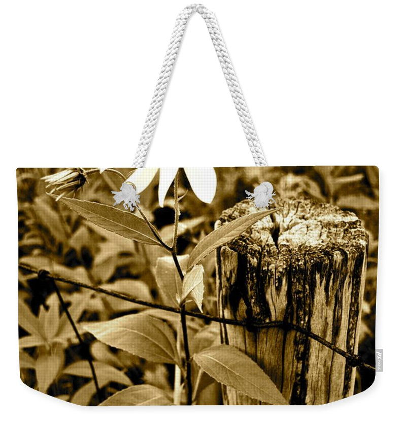 Flower Weekender Tote Bag featuring the photograph Flower In Sepia by Frozen in Time Fine Art Photography