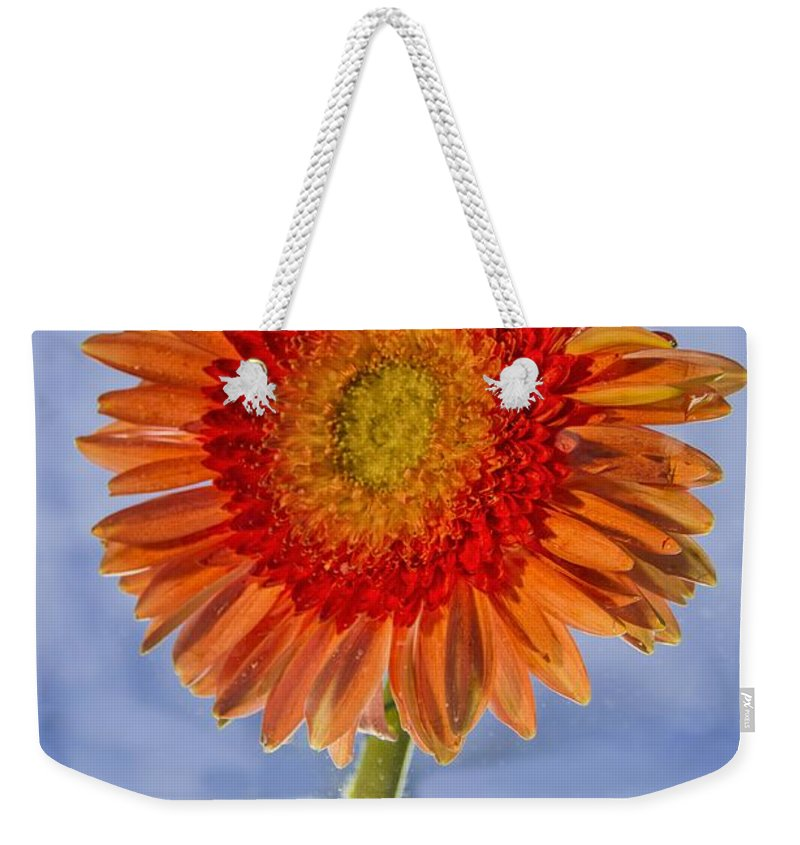 Water Weekender Tote Bag featuring the photograph Flower In Water by Paulo Goncalves