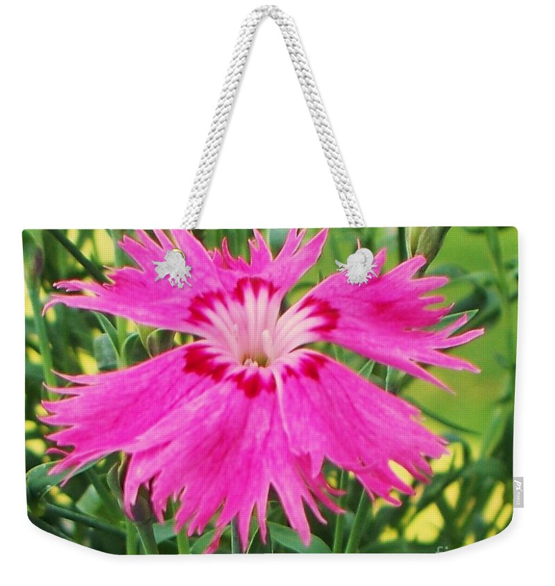 Flower Weekender Tote Bag featuring the photograph Flower Pink by Eric Schiabor