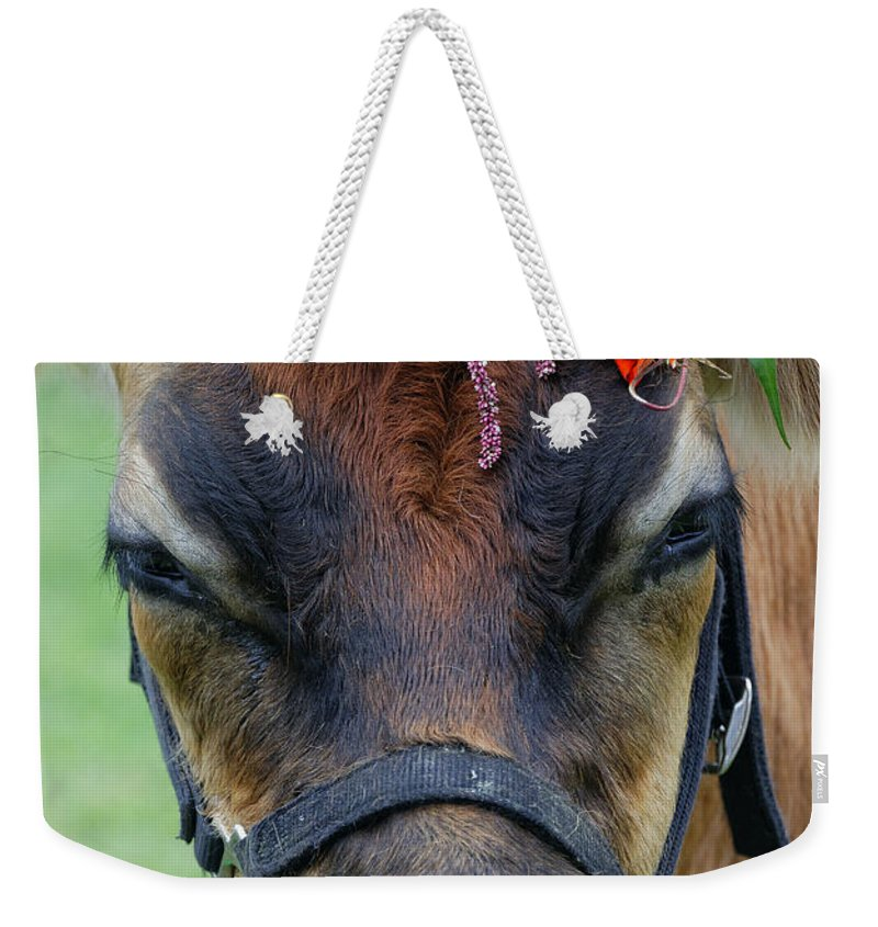 Agriculture Weekender Tote Bag featuring the photograph Flower Power by John Greim