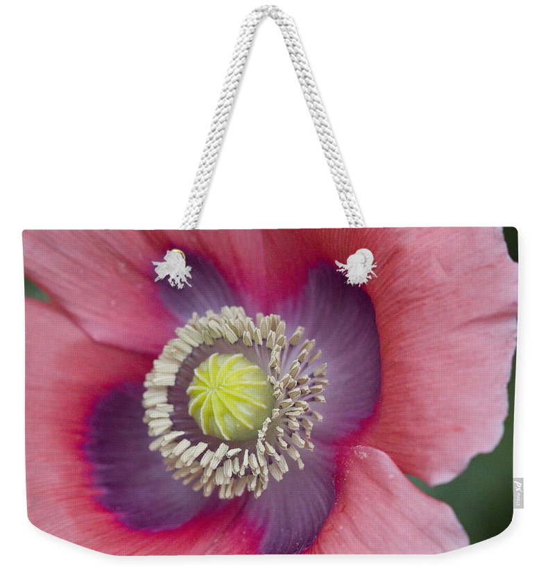 Rose Photographs Weekender Tote Bag featuring the photograph Flower Power by Vernis Maxwell