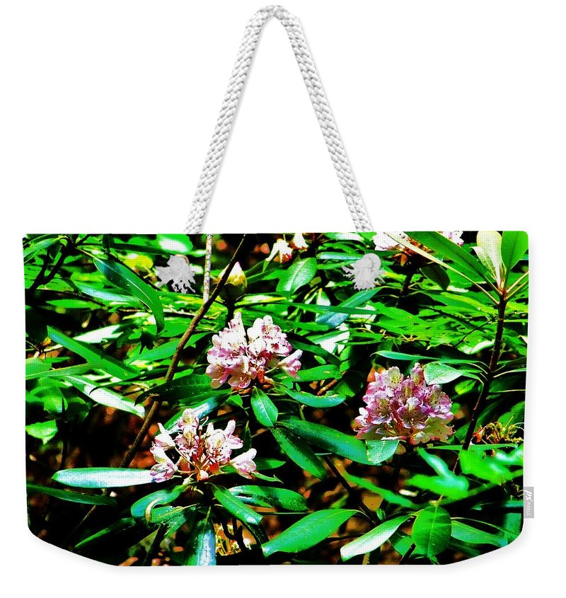 Flower Weekender Tote Bag featuring the photograph Flowered Tree by Chuck Hicks