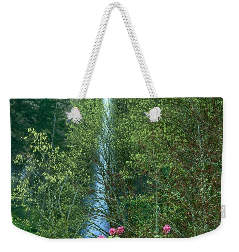 North America Weekender Tote Bag featuring the photograph Flowering Tree Below Multnomah Falls Columbia River Gorge Nsa Oregon by Dave Welling