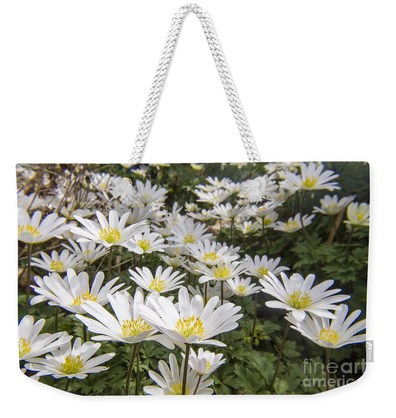 Spring Weekender Tote Bag featuring the photograph Flowers Galore by Darleen Stry