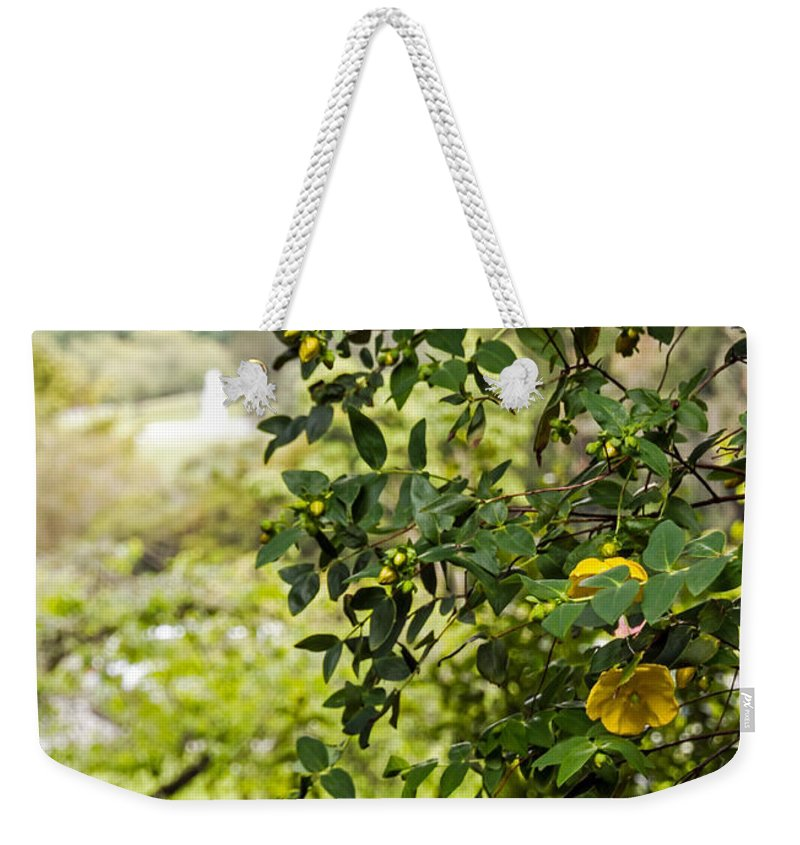 Bush Weekender Tote Bag featuring the photograph Flowers In The Park by Kate Brown
