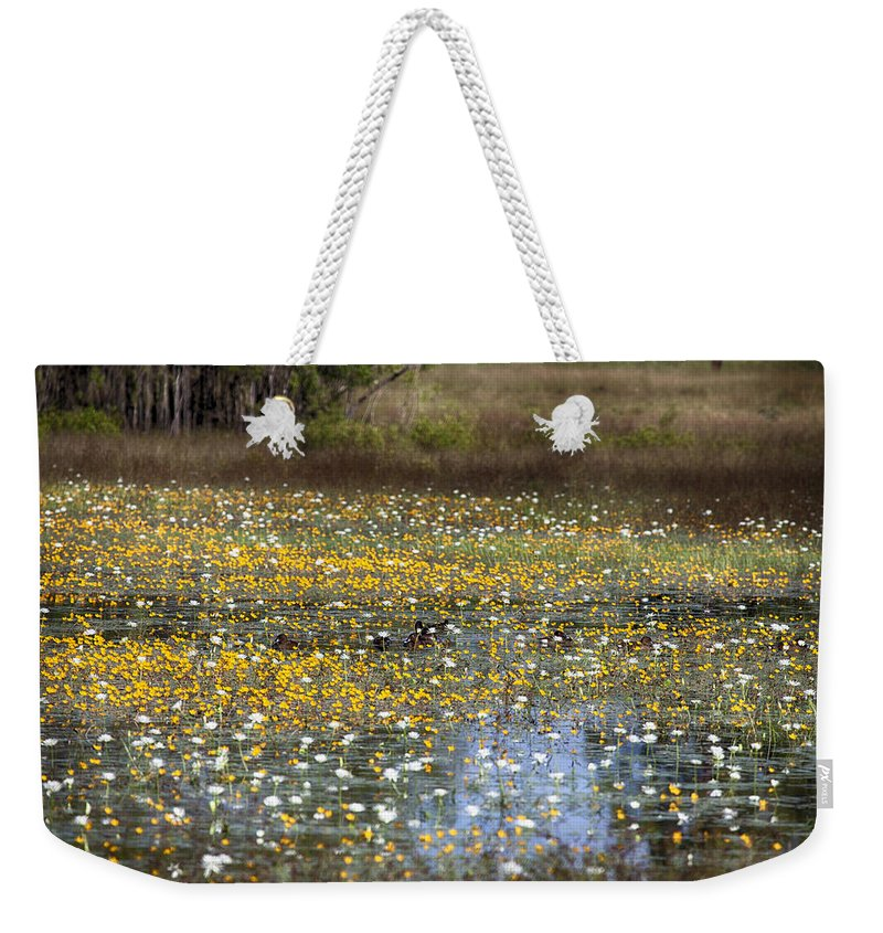 Flowers Weekender Tote Bag featuring the photograph Flowers Of The Billabong by Douglas Barnard