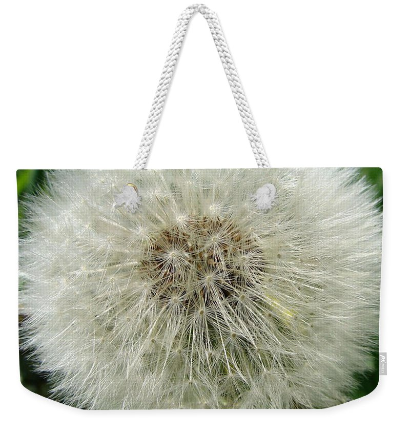 Fluffy Weekender Tote Bag featuring the photograph Fluffy by Carol Lynch