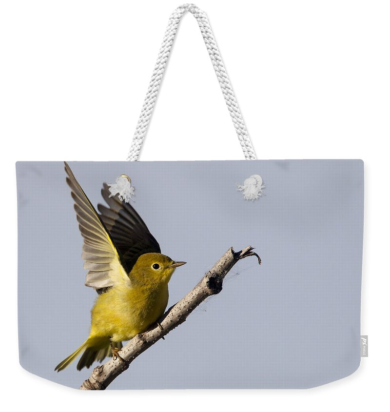 Doug Lloyd Weekender Tote Bag featuring the photograph Fly Away by Doug Lloyd