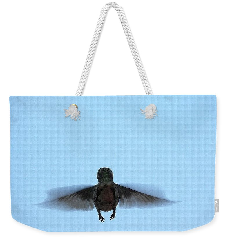 Hummingbirds Weekender Tote Bag featuring the photograph Fly Away Home Little Hummingbird by Jewels Hamrick