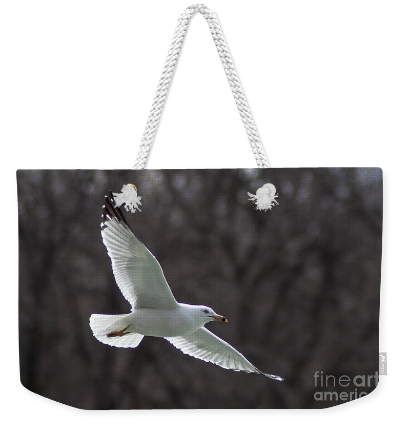 Seagull Weekender Tote Bag featuring the photograph Fly Be Free by Darleen Stry