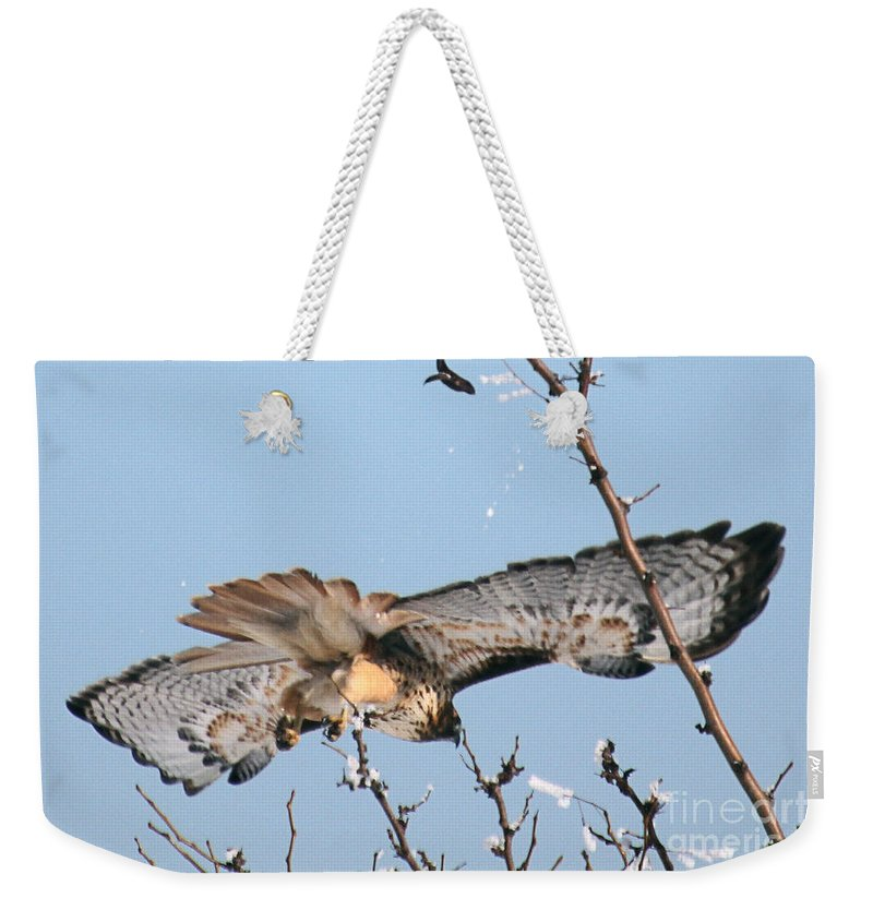 Colorado Weekender Tote Bag featuring the photograph Flyby by Bob Hislop
