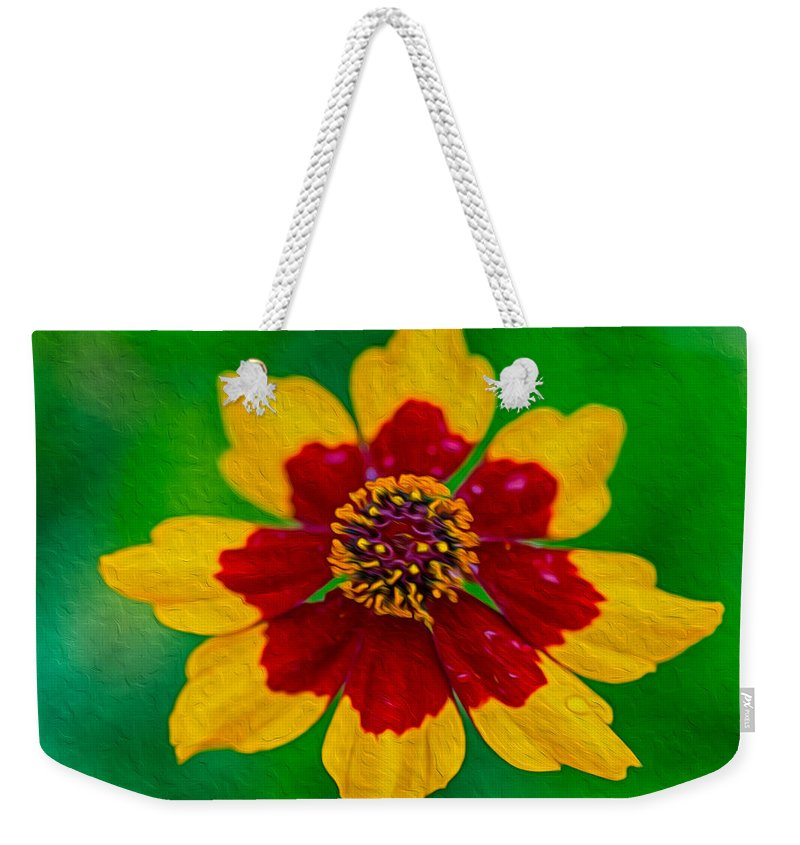 North Cascades Weekender Tote Bag featuring the painting Flying Colors by Omaste Witkowski