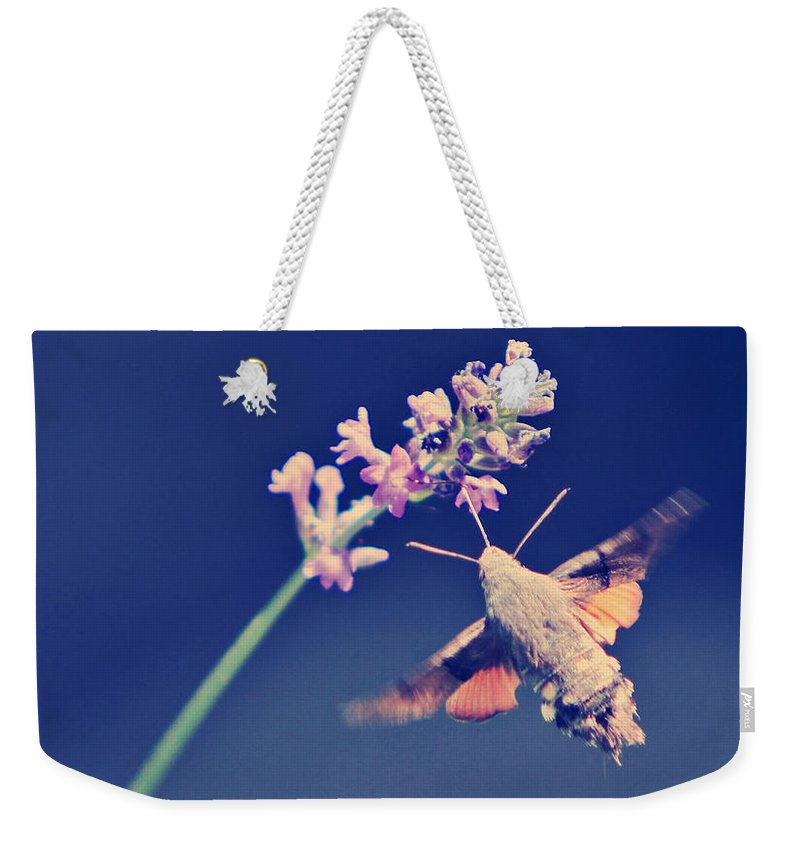 Insect Weekender Tote Bag featuring the photograph Flying by Dan Radi