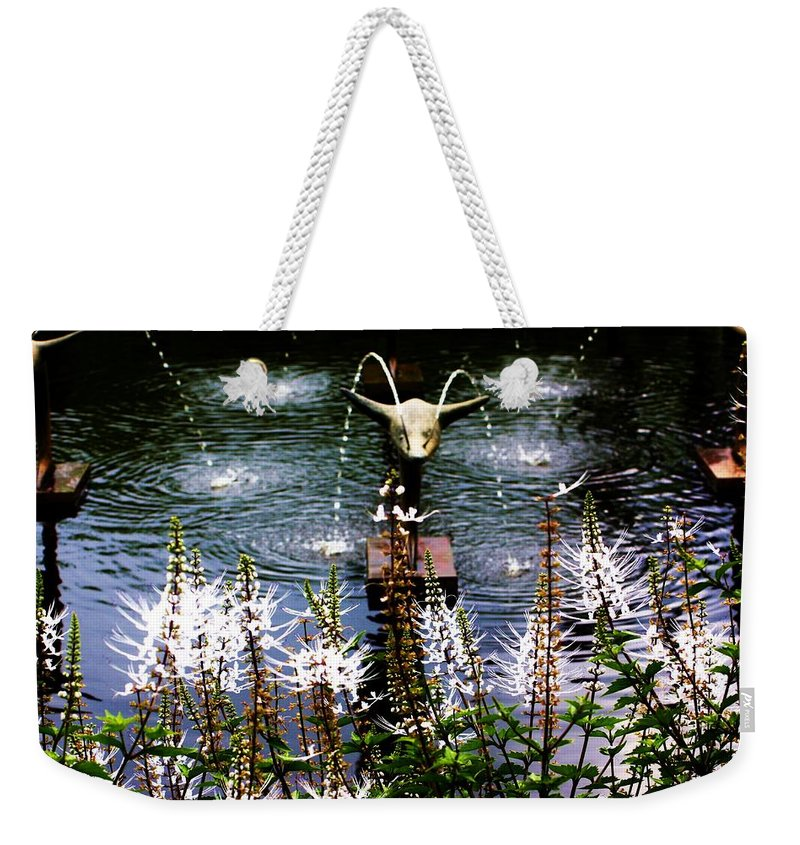 Flying Weekender Tote Bag featuring the photograph Flying Dolphins by Chuck Hicks