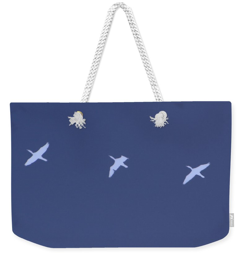 Ducks Flying Weekender Tote Bag featuring the mixed media Flying South by Kevin Caudill