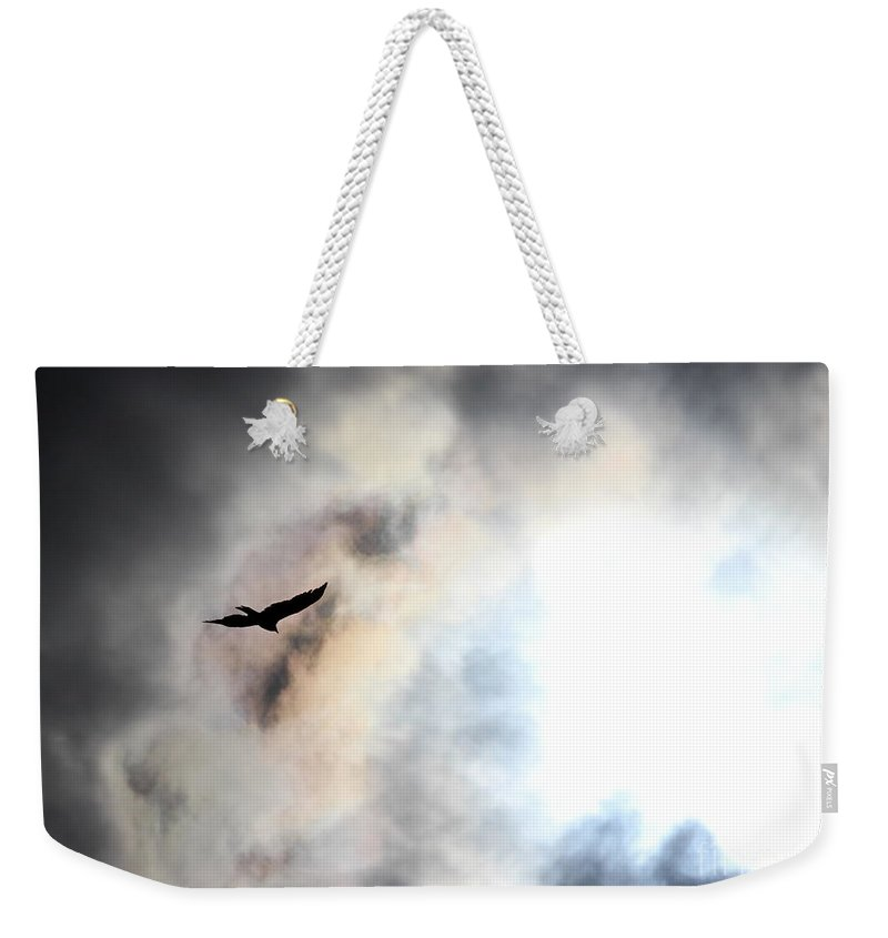 Bird Weekender Tote Bag featuring the photograph Flying Towards The Light by Kenny Glotfelty