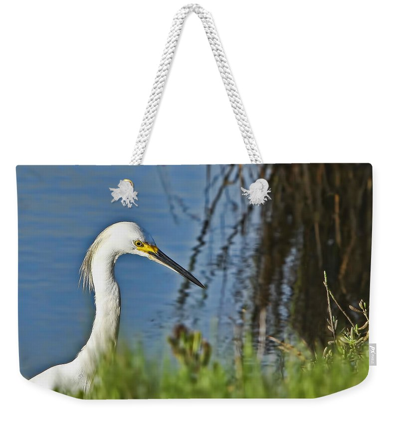 Island Weekender Tote Bag featuring the photograph Focused by Gary Holmes