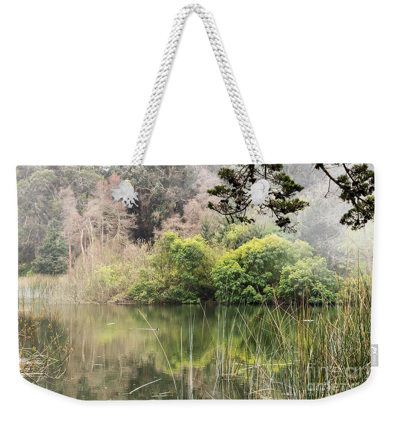 Branches Weekender Tote Bag featuring the photograph Fog And Reeds by Kate Brown