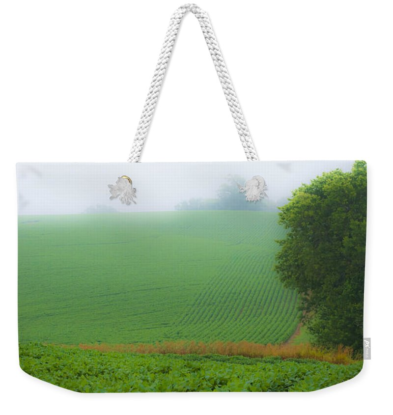 Country Weekender Tote Bag featuring the photograph Foggy Bean Field by Edward Peterson