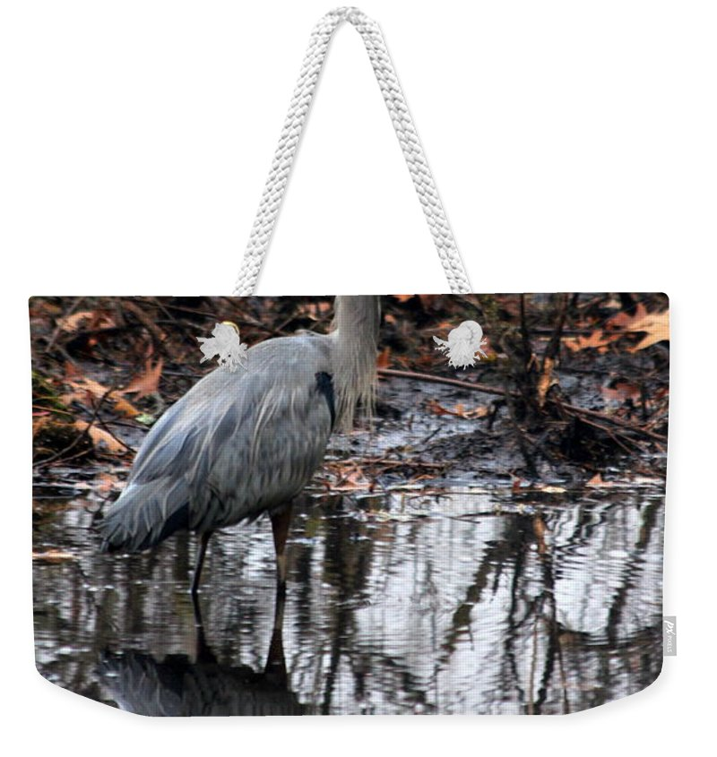 Heron Weekender Tote Bag featuring the photograph Foggy Bog Heron by Kenny Glotfelty
